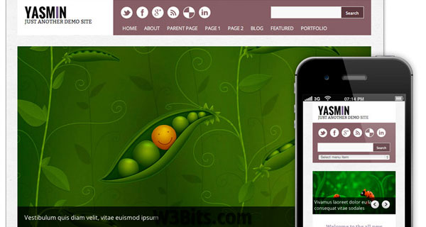 Yasmin WordPress Theme