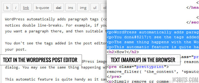 Auto paragraphs added by wpautop()